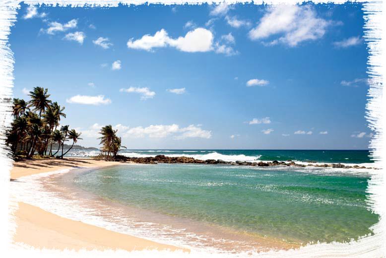 dorado playa
