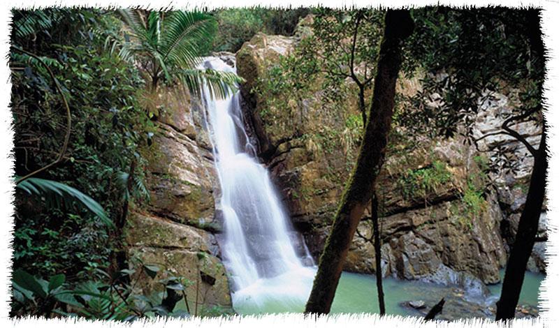 río grande yunque
