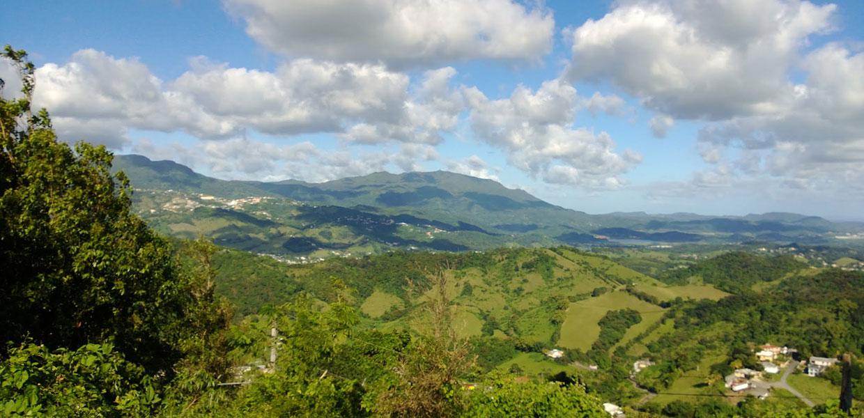 Las Piedras, Puerto Rico