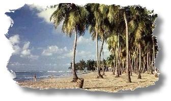luquillo playa