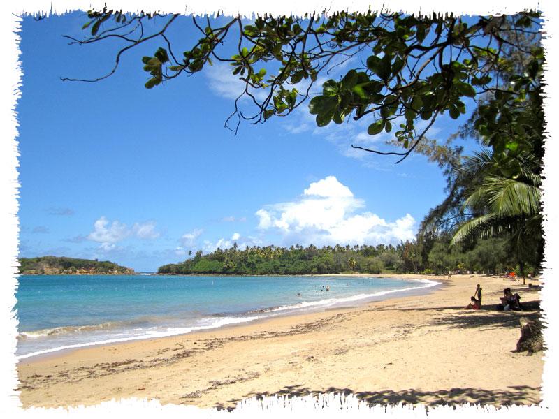 vegaalta playa