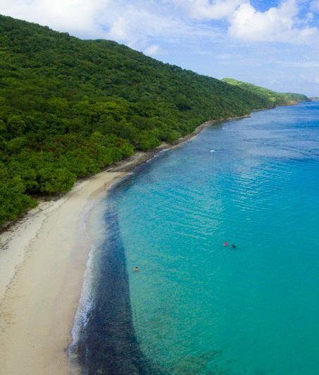 Playa Carlos Rosario