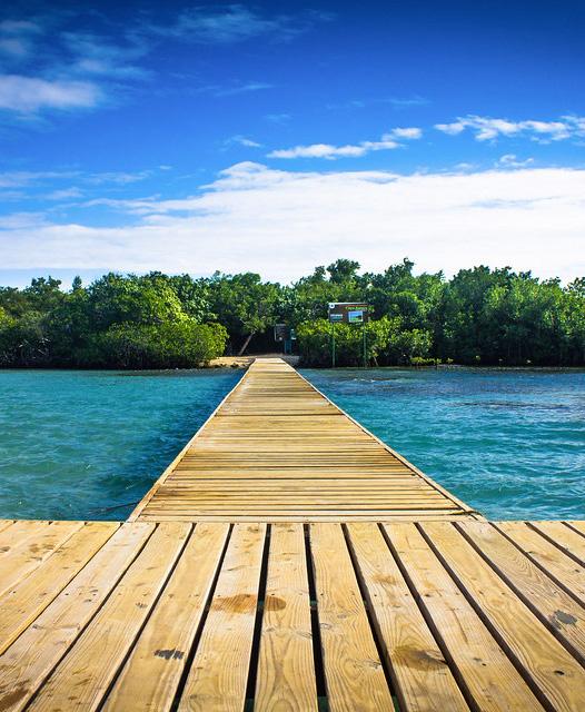 Gilligan's Island / Cayo Aurora