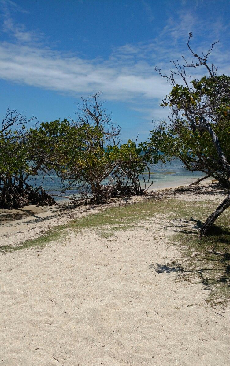 Playa Tamarindo en Guánica