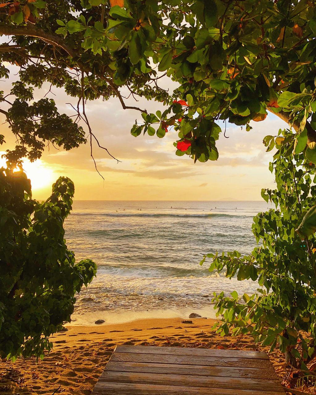 Playa Marias