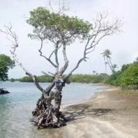 Playa Jauca – La Bahía de Jauca