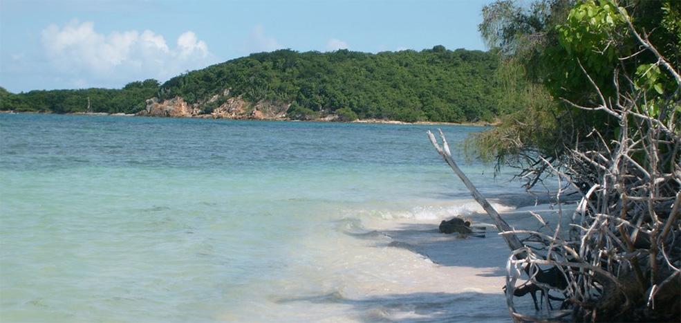 Playas Costa Este
