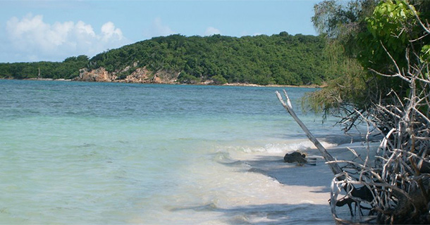 Playas en la Costa Este